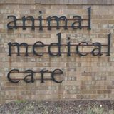 Animal Medical Care